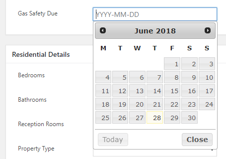 Custom Field Datepicker