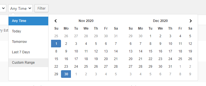 Viewing Date Filter